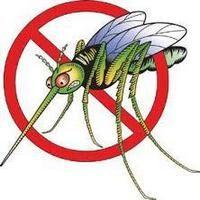 Zanzare e Febbre West Nile. Misure di prevenzione.