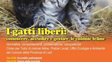 Corso gestione colonie feline